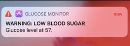 critical-alerts-in-ios-12-screenshot