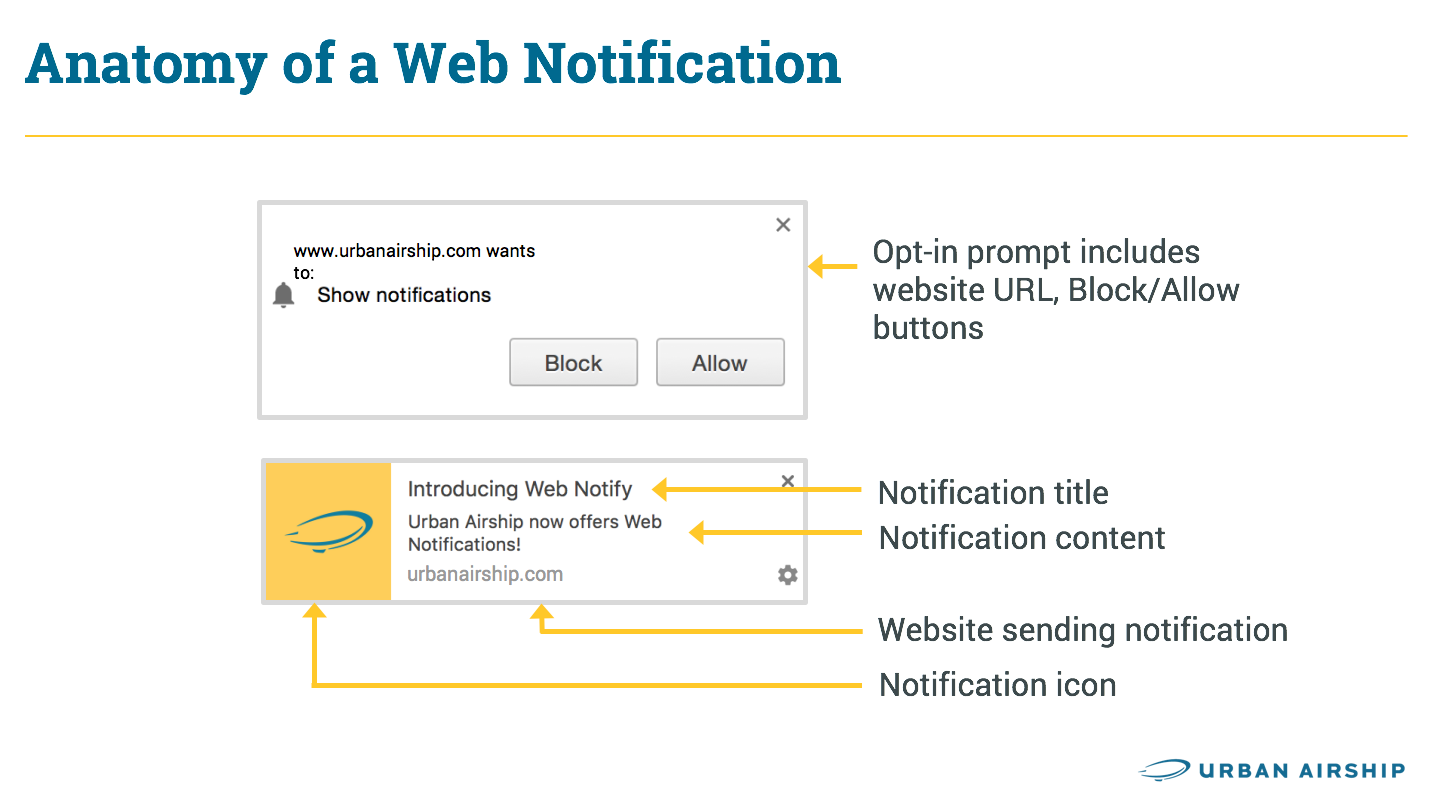 web-notification-anatomy-infographic