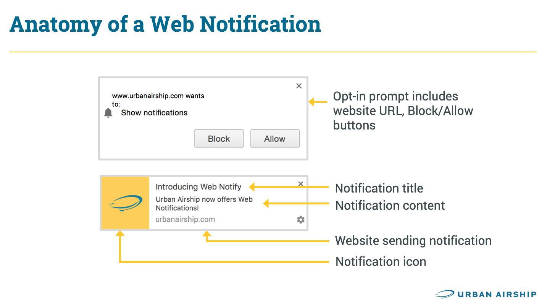 web-notification-anatomy-infographic